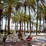 Explanada de Alicante con terraza y palmeras.